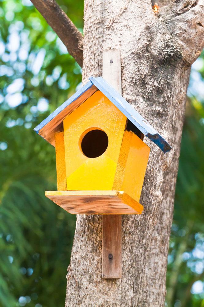 Wildlife Garden Nisthöhle Nistkasten Meisenkasten Vogelhaus Vogelhäuschen GELB