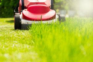 Rasenmäher verrichtet seinen Dienst
