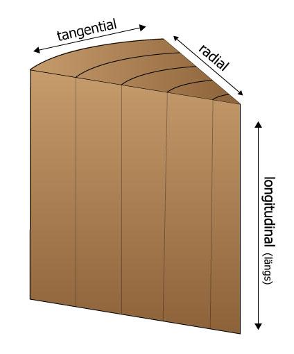 Hauptschwindrichtungen von Holz