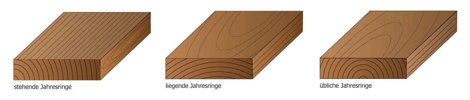 Holzquerschnitte mit unterschiedlicher Jahresringlage
