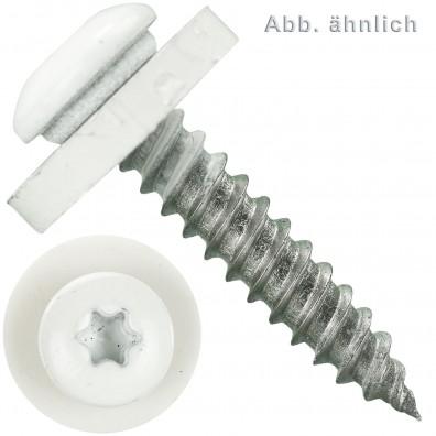 Fensterbankschrauben mit Polyamidscheibe - Edelstahl A2 - RAL9003 Signalweiß - Kappenkopf - TX 15