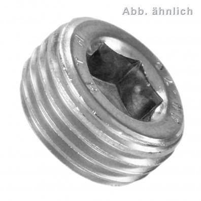 50 Verschlussschrauben 1-4 Zoll Rohrgewinde - DIN 906 - Edelstahl A4