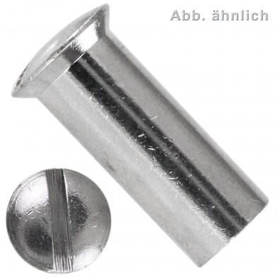 200 Hülsenmuttern M4 x 12 mm - Linsensenkkopf - Messing - vernickelt