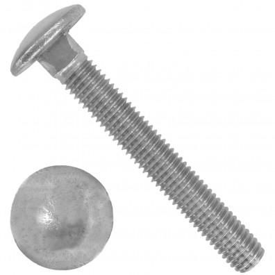 100 Schlossschrauben DIN 603 - M8 x 50 mm - Edelstahl A2