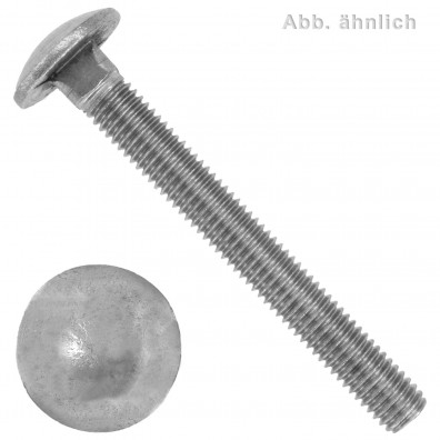 100 Schlossschrauben DIN 603 - M6 x 55 mm - Edelstahl A2