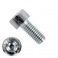 500 Zylinderschrauben M5 x 12mm - verzinkt - 8.8 - Innensechskant - DIN 912