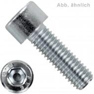 100 Zylinderschrauben M5 x 10mm - verzinkt - 8.8 - Innensechskant - DIN 912