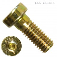 500 Innensechskantschrauben, niedriger Kopf - 4 x 10 mm - DIN 6912 - gelb verz.