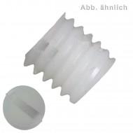 100 Gewindestifte mit Schlitz und Kegelkuppe M6 x 8 mm - DIN 551 - Polyamid