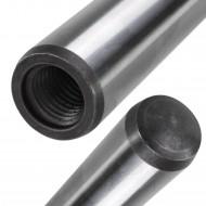 1 Zylinderstift mit Innengewinde 25 x 100 mm - DIN 7979 Form D
