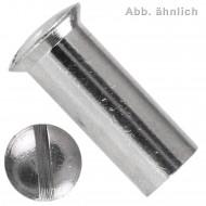100 Hülsenmuttern M5 x 15 mm - Linsensenkkopf - Messing - vernickelt