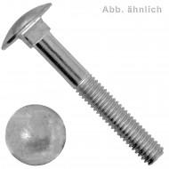 10 Schlossschrauben DIN 603 - M8 x 100 mm - Edelstahl A4