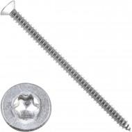 200 Blechschrauben DIN 7982 - 4,8x80mm - Senkkopf – TX25- Edelstahl A2