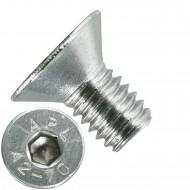 1000 Senkschrauben M 3 x 5 mm  - ISO 10642 - Innensechskant - Edelstahl A2