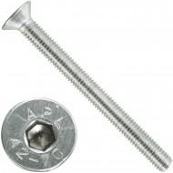 200 Senkschrauben M 5 x 55 mm  - ISO 10642 - Innensechskant - Edelstahl A2