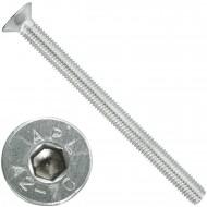 50 Senkschrauben M 8 x 100 mm  - ISO 10642 - Innensechskant - Edelstahl A2