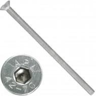 50 Senkschrauben M 8 x 150 mm  - ISO 10642 - Innensechskant - Edelstahl A2