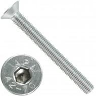 25 Senkschrauben M 12 x 110 mm  - ISO 10642 - Innensechskant - Edelstahl A2