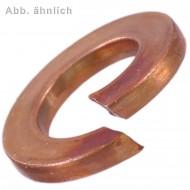500 Federringe Bronze DIN 127 Form B für M8