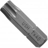100 Torx® Bits - TX40 - 1-4 Zoll E 6,3 Hausmarke, Länge 25 mm