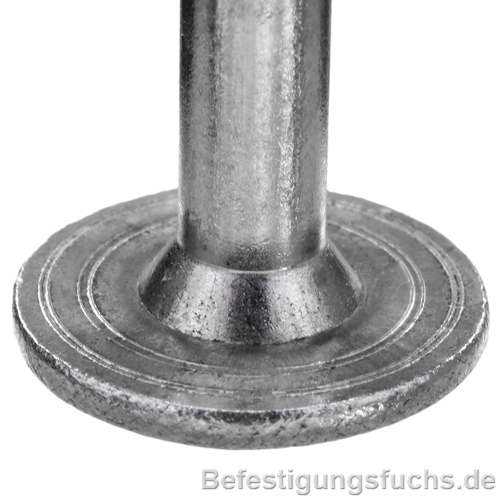 Tellerkopf im Detail Holzbauschraube A2