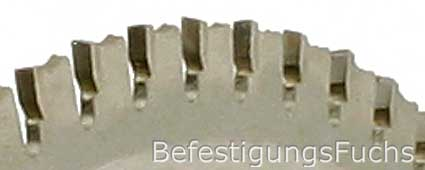Foto des Sägeblattes